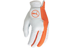 PUMA Golf Pro Formation Hybrid Handschuh