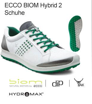 Ecco Shoe 2